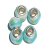 Lampwork European Beads 5mm Hole Silver Plated Core