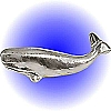 Whale - Pewter Figurine Lead Free