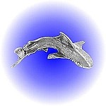 Attacking Shark Pewter Figurine - lead free